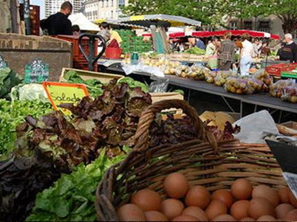 Selon l'Ademe, le gaspillage alimentaire représente près de 20 kg par an et par habitant
